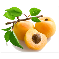 Apricot PNG - 22314