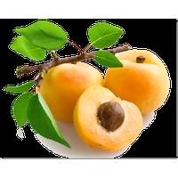 Similar Apricot PNG Image