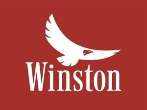 Winston Logo - Arequipa PNG