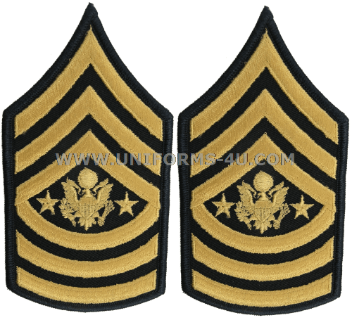 Army Csm Rank PNG-PlusPNG.com-500 - Army Csm Rank PNG