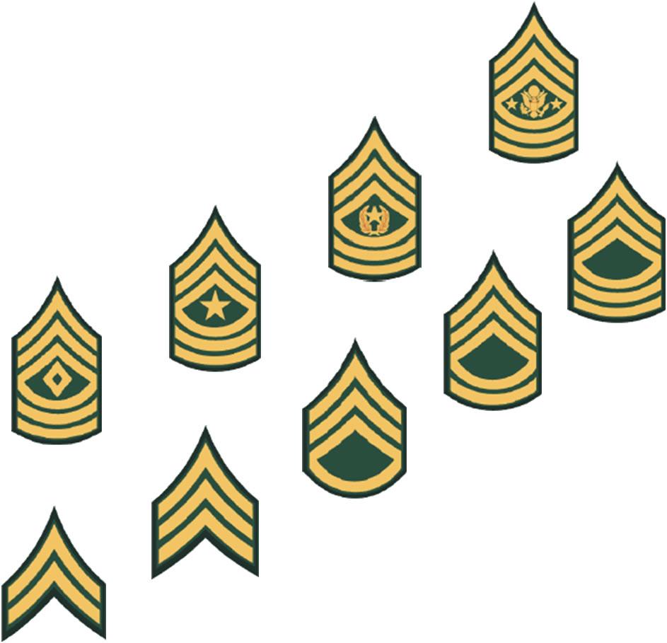 Army Csm Rank PNG - 133340