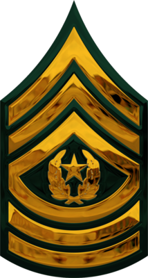 Army Csm Rank PNG Transparent Army Csm Rank.PNG Images ...