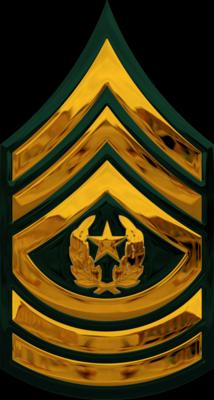 Army Csm Rank PNG - 133328