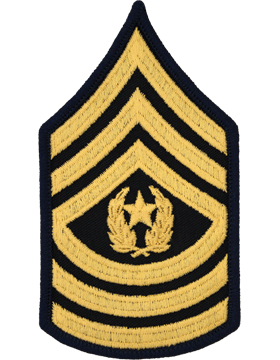 CSM Coe served three years active duty, beginning in June 1964 and ending  June 1967. He was assigned to the 2nd ACR in Amberg, Germany for 27 months,  PlusPng.com  - Army Csm Rank PNG