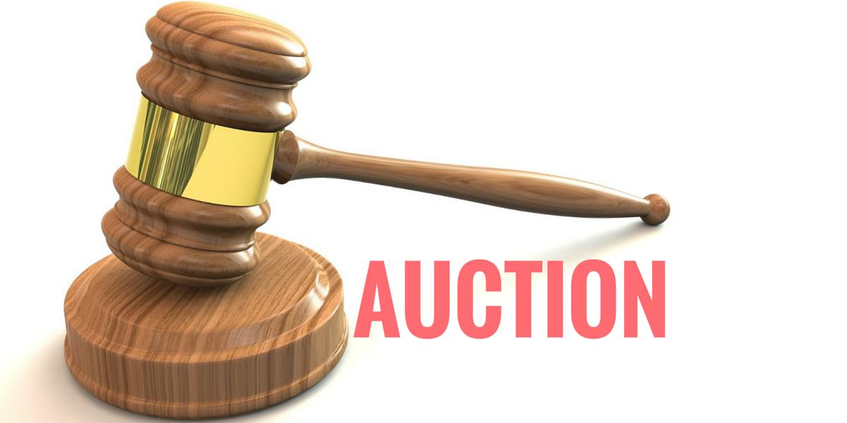 Auction PNG - 25789