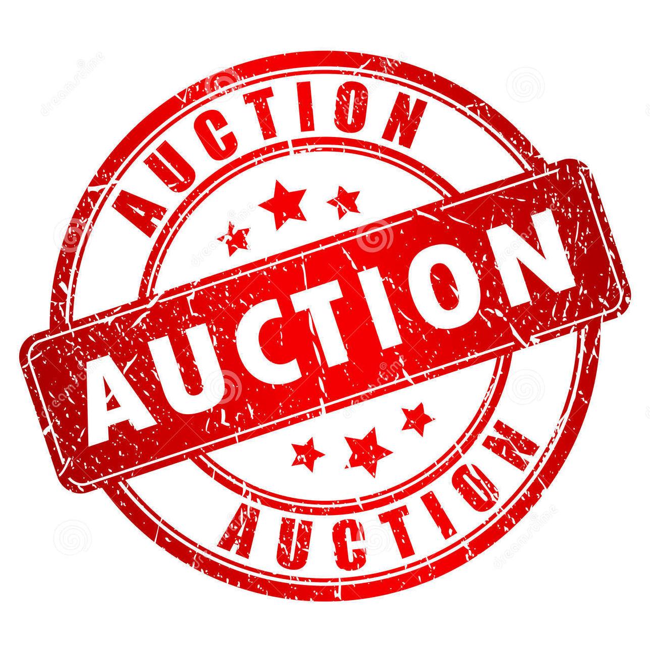 Auction PNG - 25780