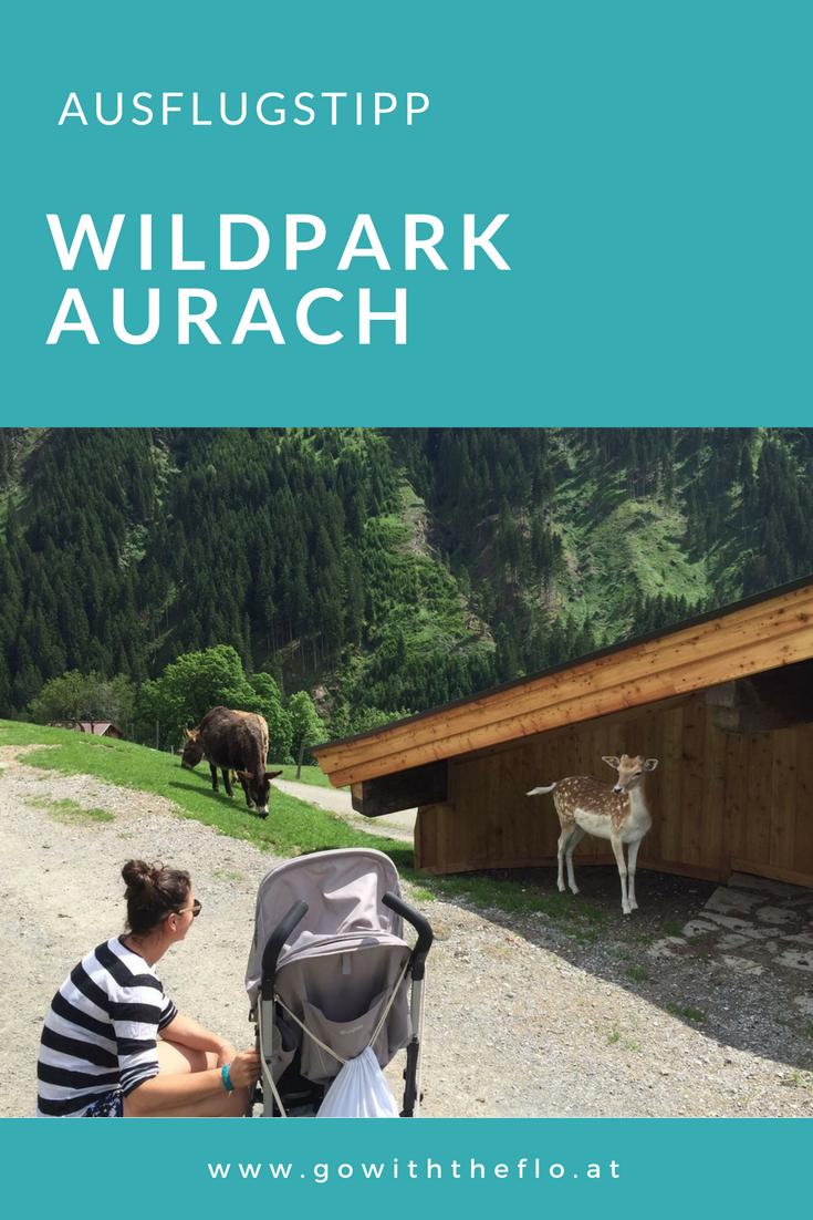 Ein super Ausflug mit Kindern ist der Wildpark in Aurach in der Nähe von  Kitzbühel. - Ausflug Mit Kindern PNG