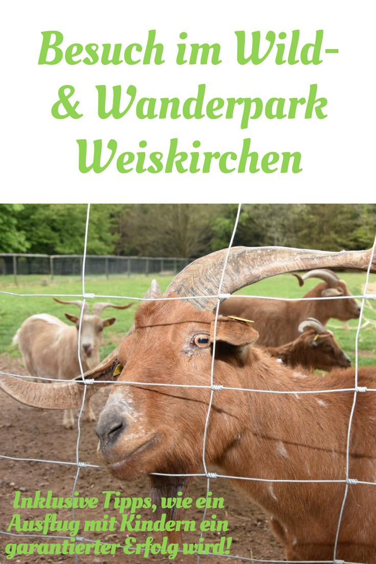 Im Wild- und Wanderpark Weiskirchen gibt es mehr als nur Tiere zu  entdecken! Plus - Ausflug Mit Kindern PNG