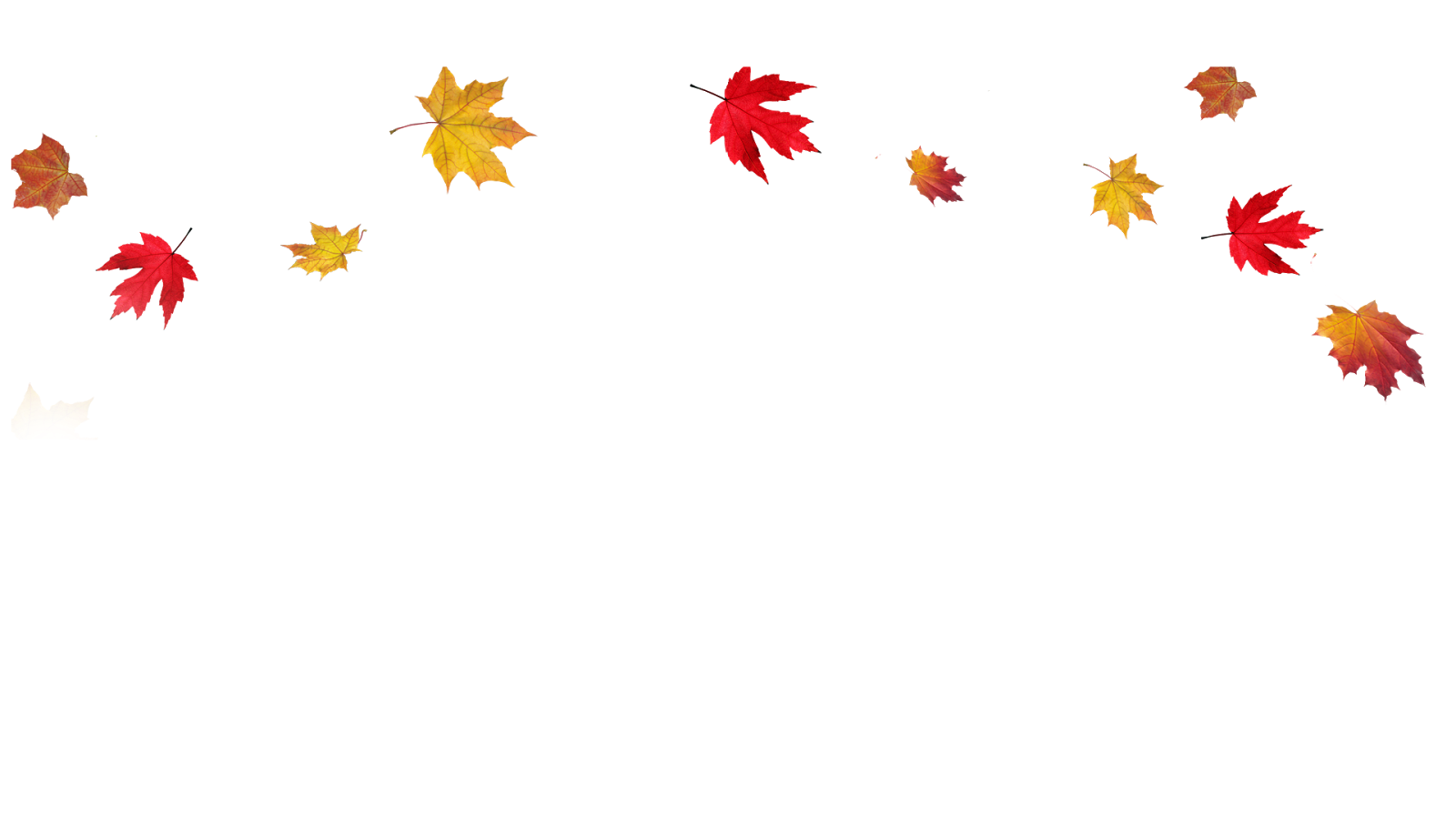 Transparent Fall Leaves Border PNG - Autumn Leaves HD PNG
