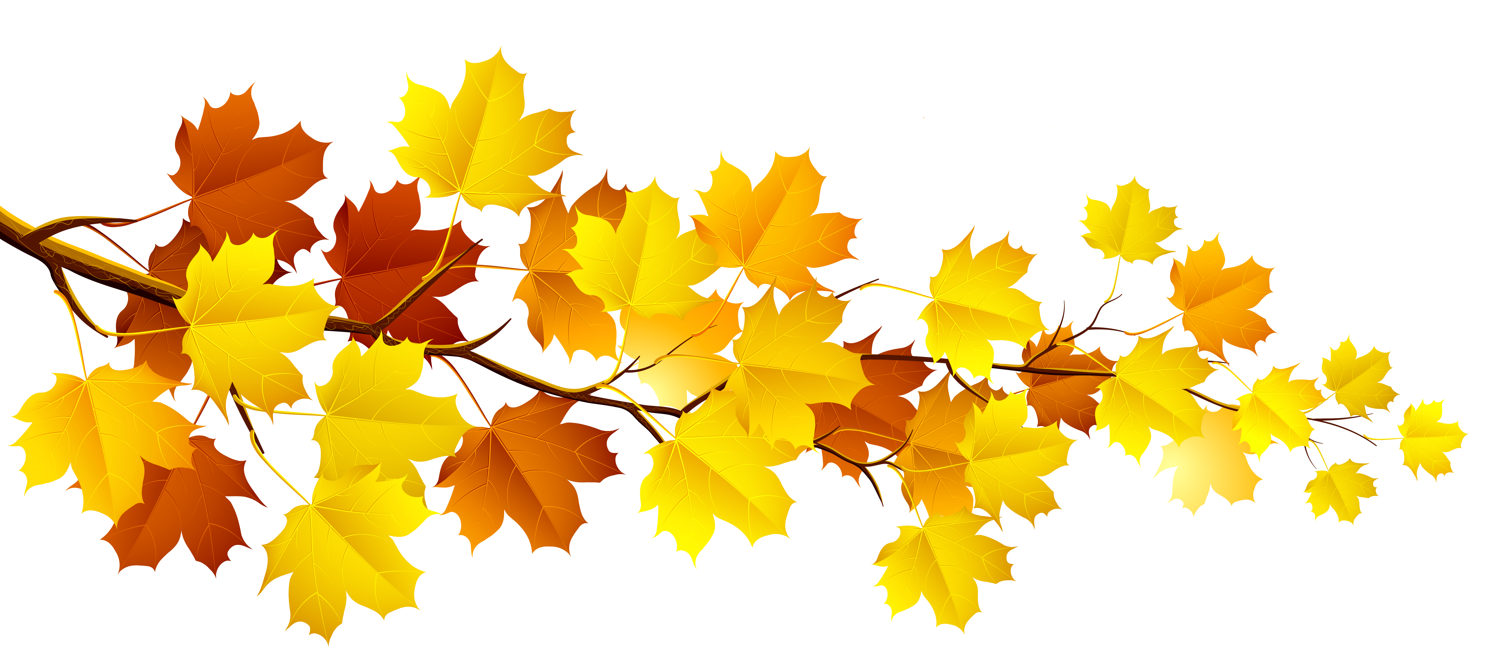 Fall Leaves Clipart - Autumn PNG
