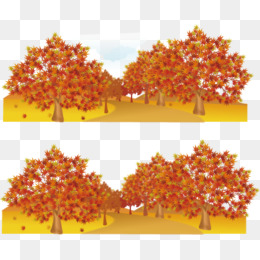 Autumn maple, Maple, Maple Leaf, Sun PNG and Vector - Autumn Sun PNG