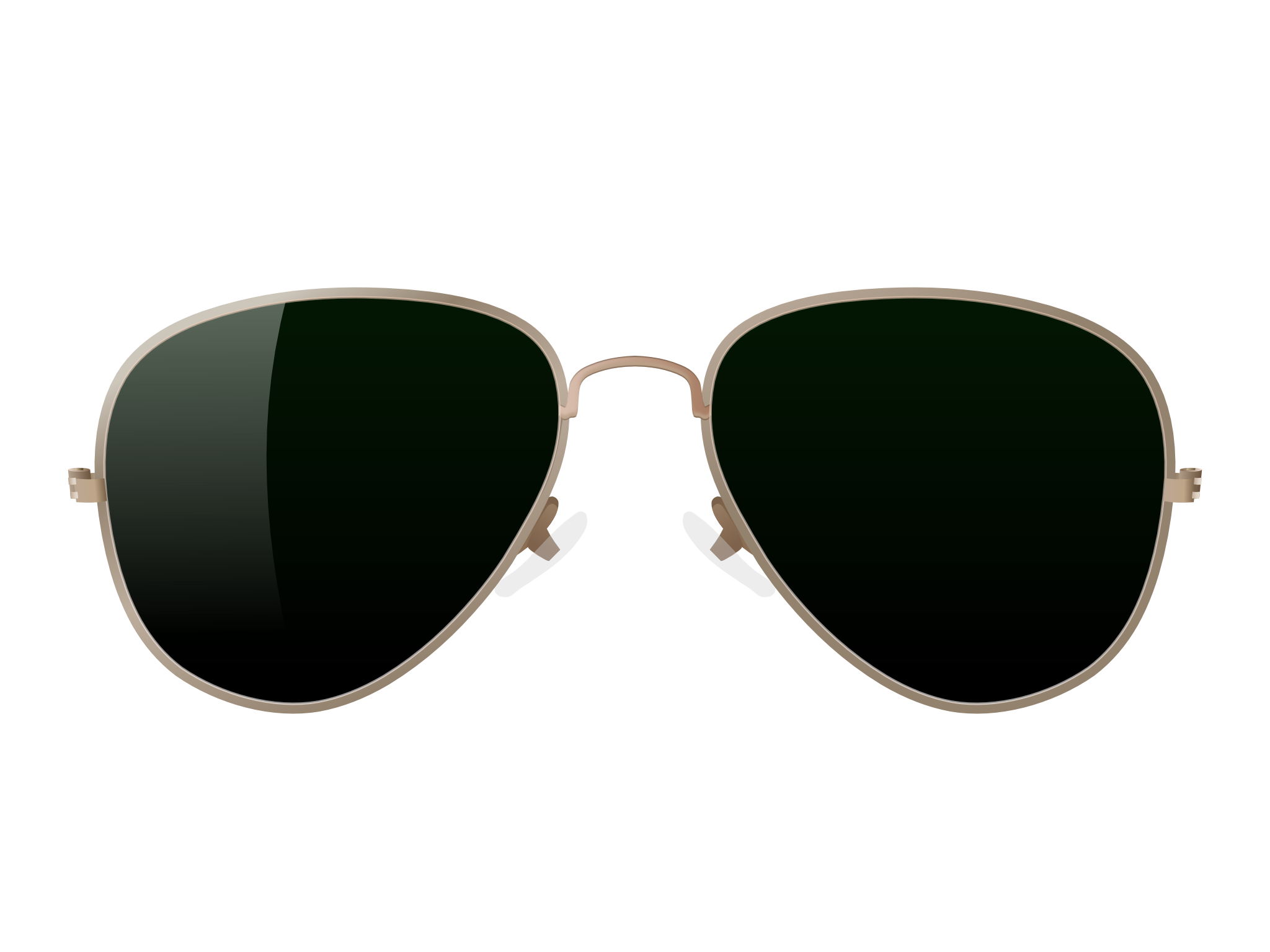 aviator sunglasses vector