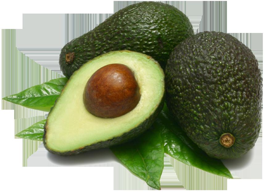 Avocado PNG - 18164