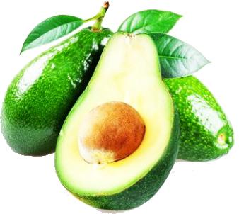 Avocado PNG - 18166