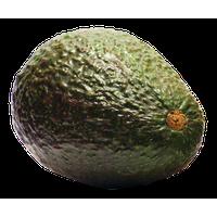 Avocado PNG - 18157