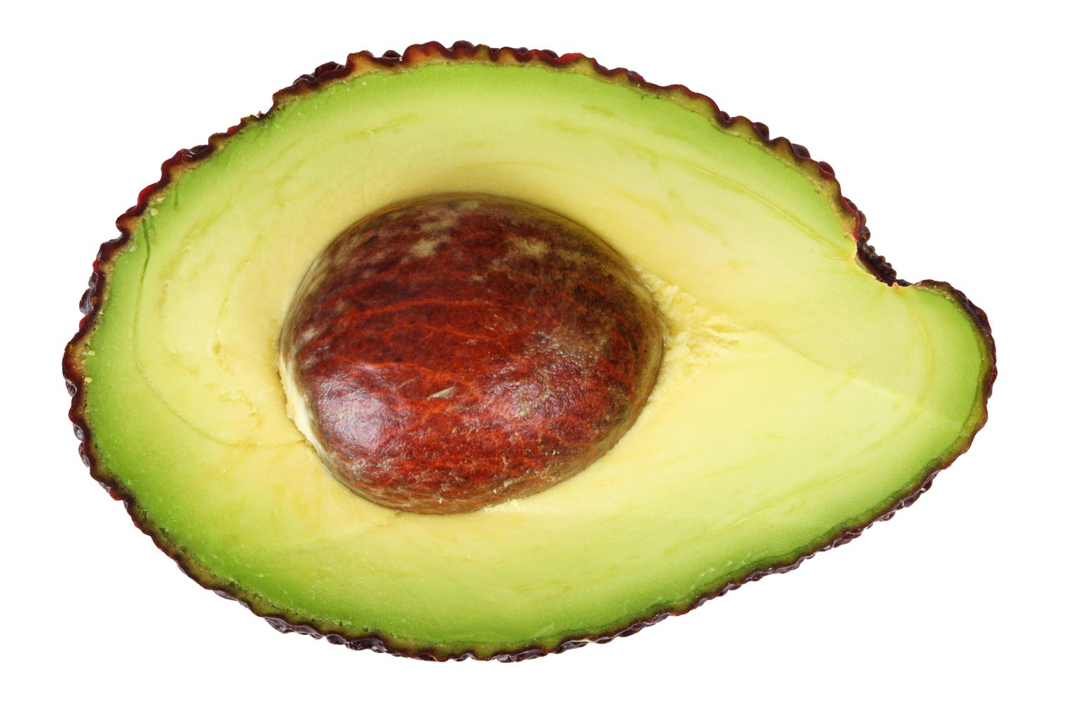 Avocado PNG - 18161