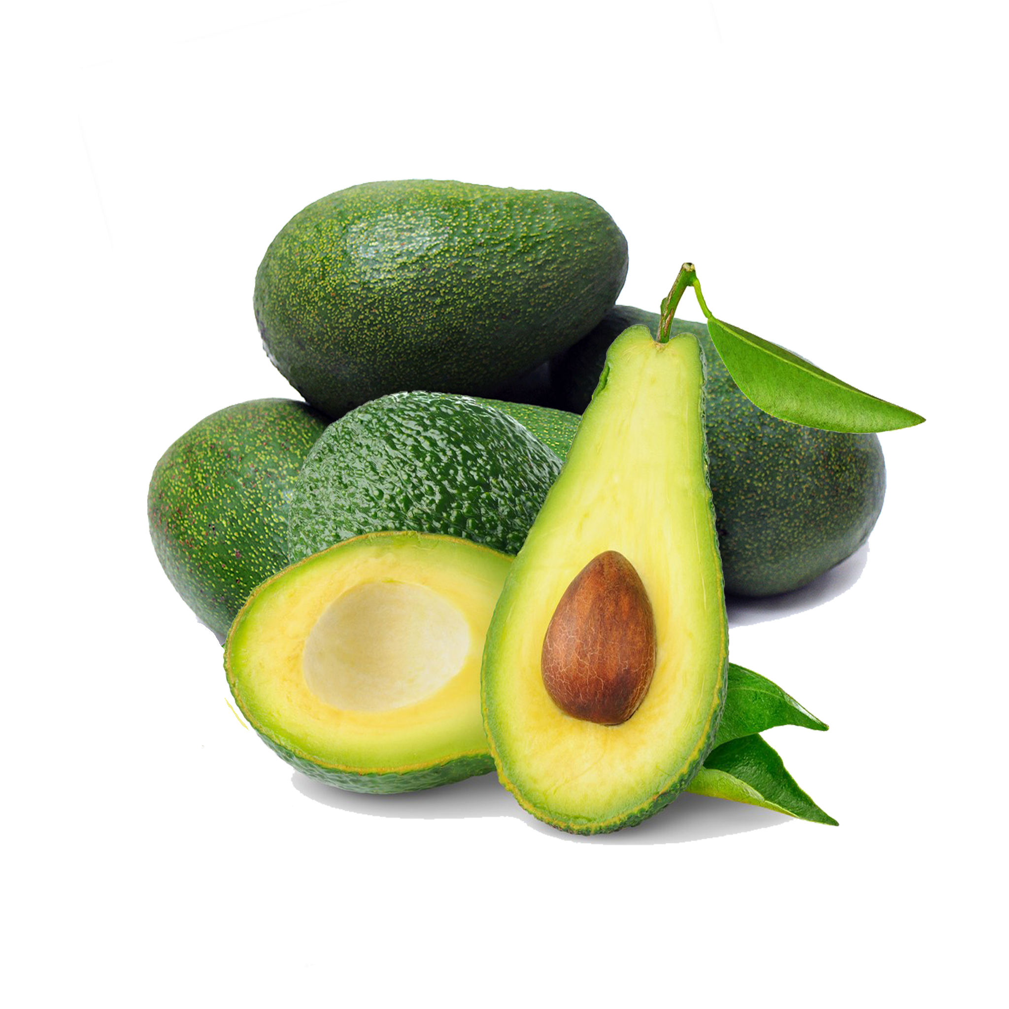 Avocado PNG - 18152