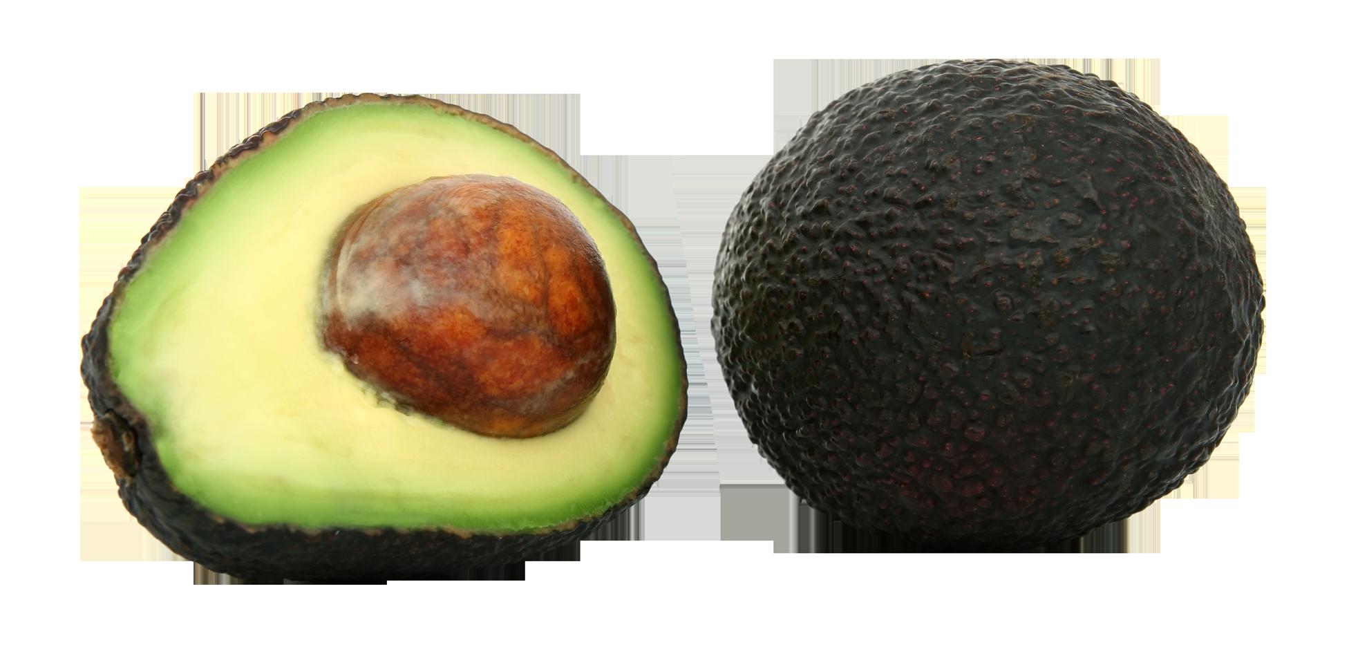 Avocado PNG - 18155