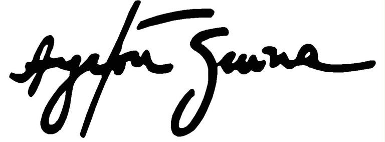 Ayrton Senna S Logo PNG - 39939