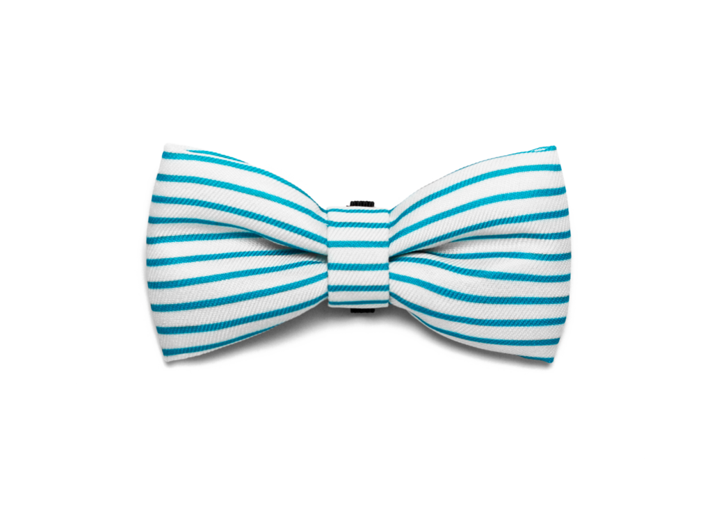 Bali the Dog Zeedog Helsinki Bow Tie for those James Bond moments or any  party outfit - Baby Blue Bow Tie PNG