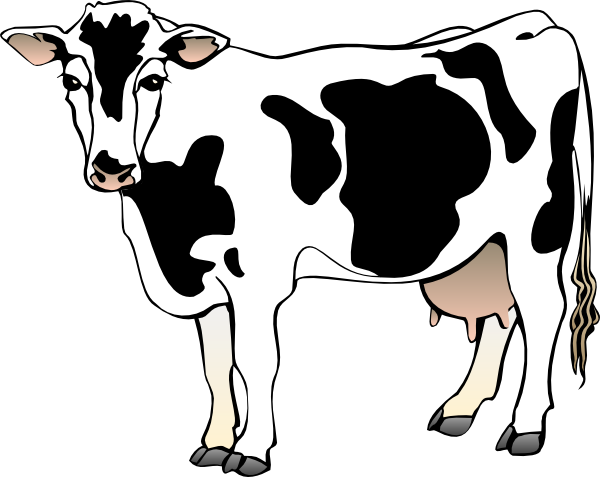 Baby Cow Clipart | Clipart Library - Free Clipart Images - Baby Cow PNG HD