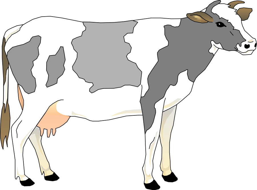 Cow 3 Small Clipart 300pixel Size, Free Design - Baby Cow PNG HD
