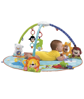 Deluxe Musical Activity Gym - Baby Gym PNG