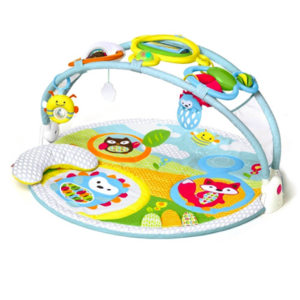 Explore U0026 More Amazing Arch Activity Gym - Baby Gym PNG
