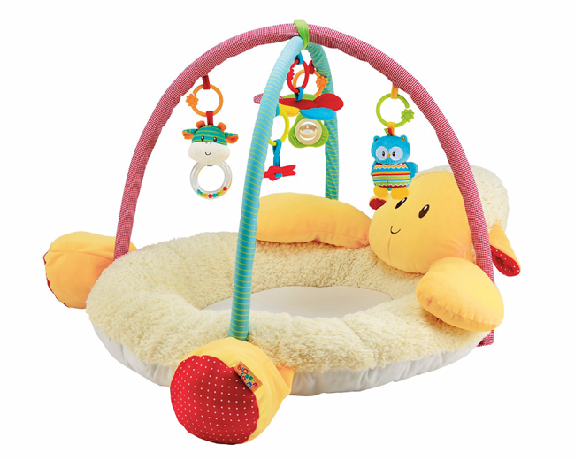 Baby Gym PNG