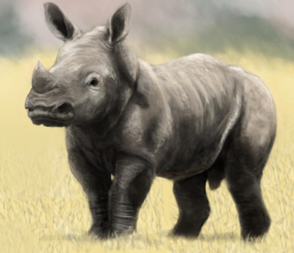 . PlusPng.com Baby Rhino By Petey-chan - Baby Rhino PNG