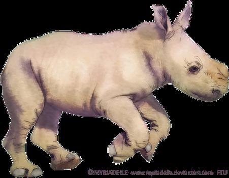 Myriadelle 12 0 Baby Rhino FTU Tube By Myriadelle - Baby Rhino PNG