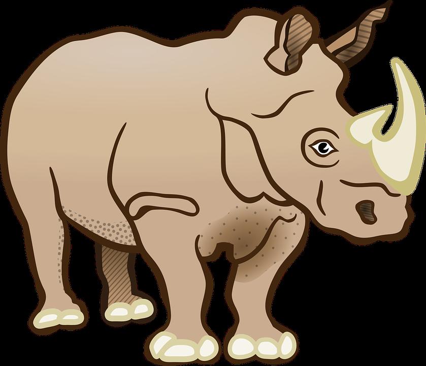 Rhino, Rhinoceros, Mammal, Africa, Safari, Animals - Baby Rhino PNG