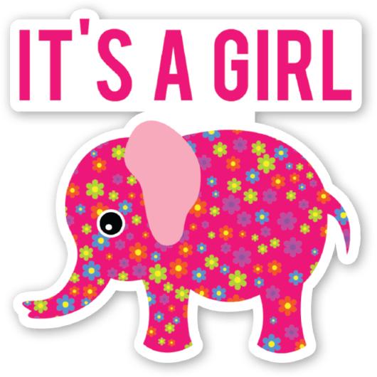 Elephant-baby-shower-its-a-girl.png (530× - Baby Shower Its A Girl PNG