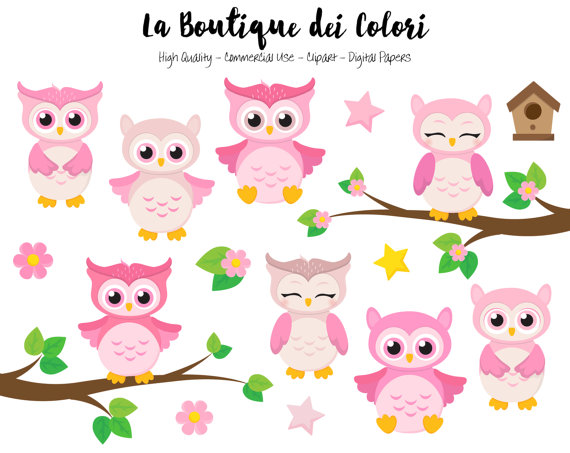 Pink Baby Owls Clipart, Cute Graphics PNG, Birds, Animals, Its A Girl, Baby  Shower, Nursery Owl Clip Art, Planner Stickers Commercial Use - Baby Shower Its A Girl PNG
