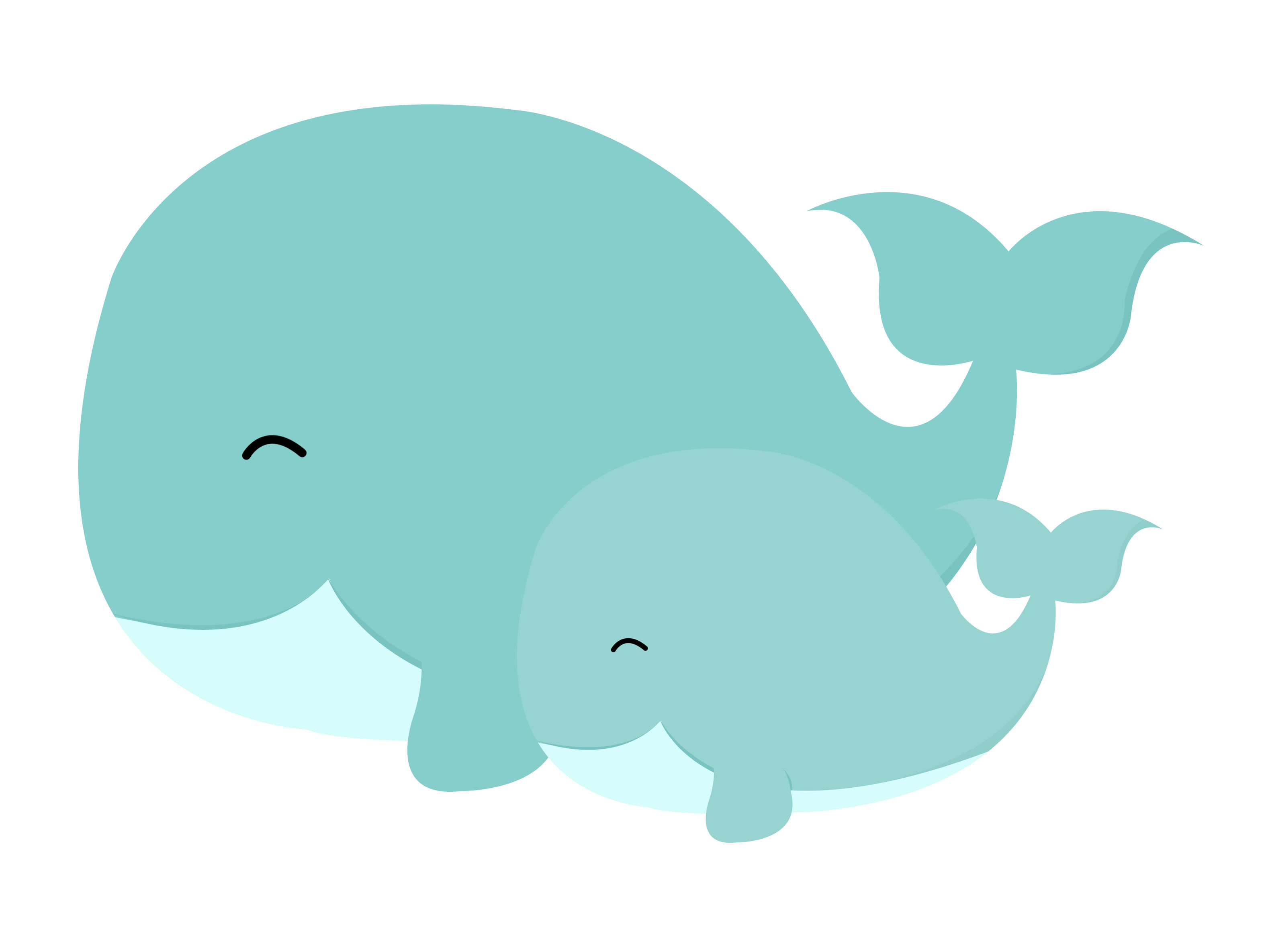 Baby Whale PNG - 53771