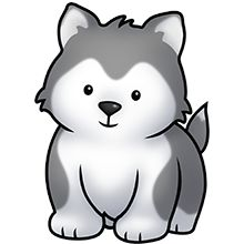 Chat - Baby Wolf PNG