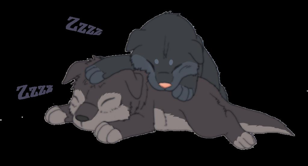 Eren and Mikasa Baby Wolf cub