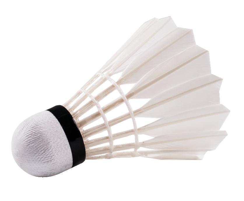 Badminton PNG - 9600