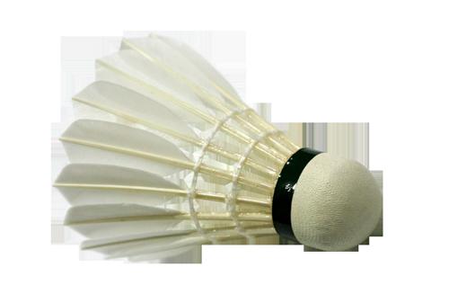 Badminton PNG - 9593