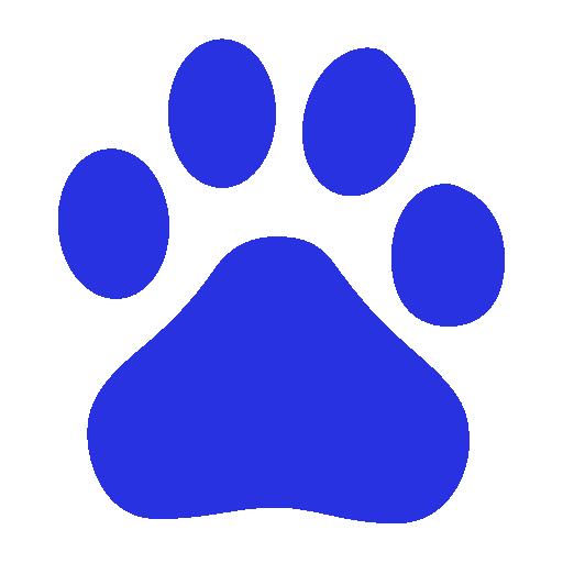 512x512 pixel - Baidu Logo PNG