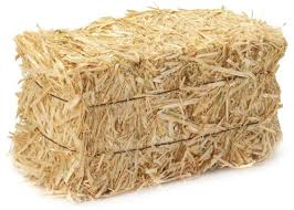 Hay bales are available from our shop on site for $8.00 incl. GST. - Bale Of Hay PNG