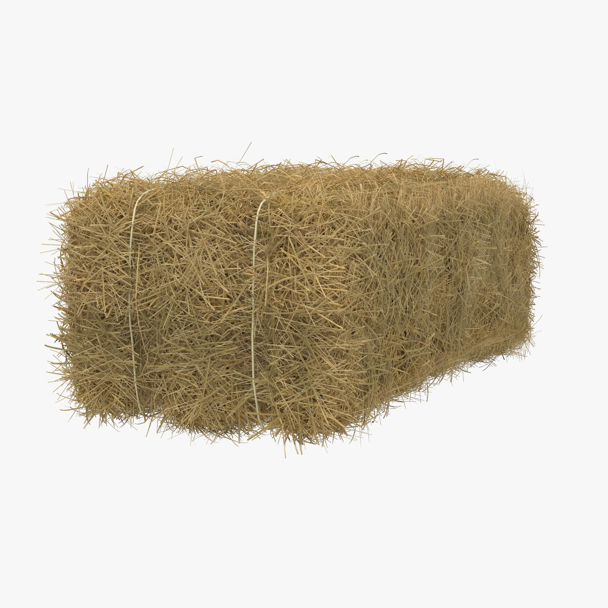 Hay Medium Bag - Bale Of Hay PNG