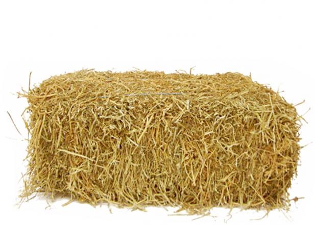 That is a pile of hay, PlusPn