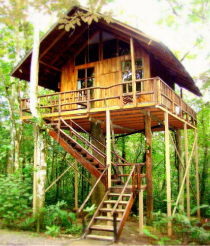 Lofty Hooch Bamboo Tree House - Bamboo Hut PNG