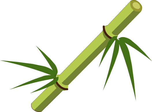 Bamboo PNG - 5973