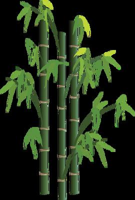Bamboo PNG HD - 128779