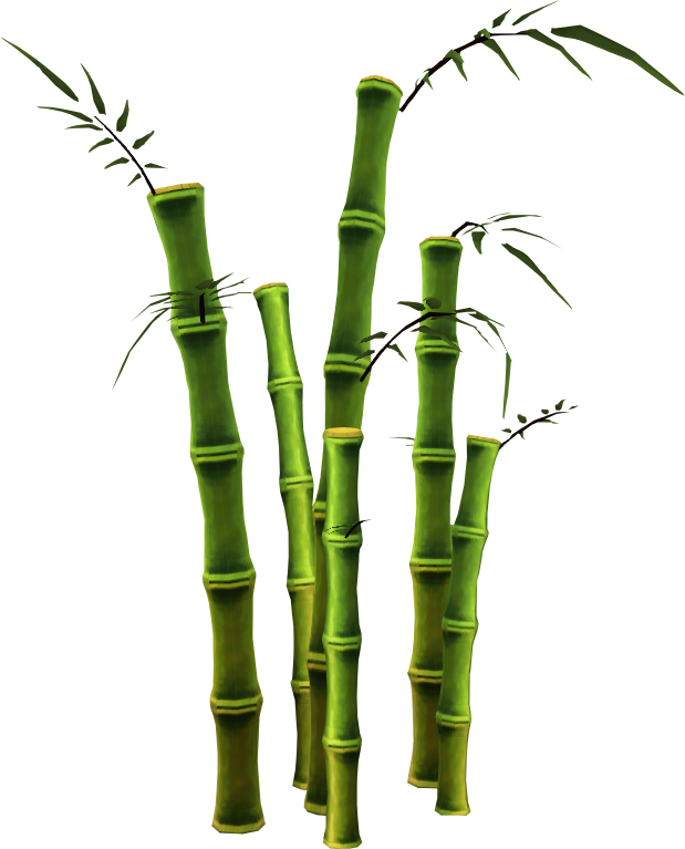 Bamboo PNG - 5968