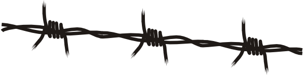 Barbed Wire PNG - 53479