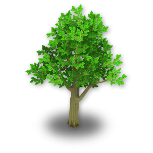 Apple Tree Stage 1 - Bare Apple Tree PNG