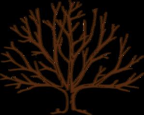 bare tree clip art | Brown Bare Tree clip art - vector clip art online, - Bare Apple Tree PNG